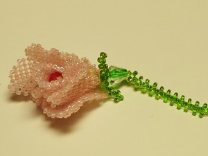 Wild flower / 野生ぽい花